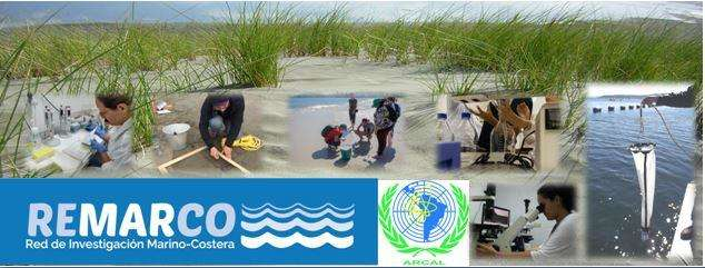 Red para la investigación de estresores marino-costeros en Latinoamérica y el Caribe - REMARCO